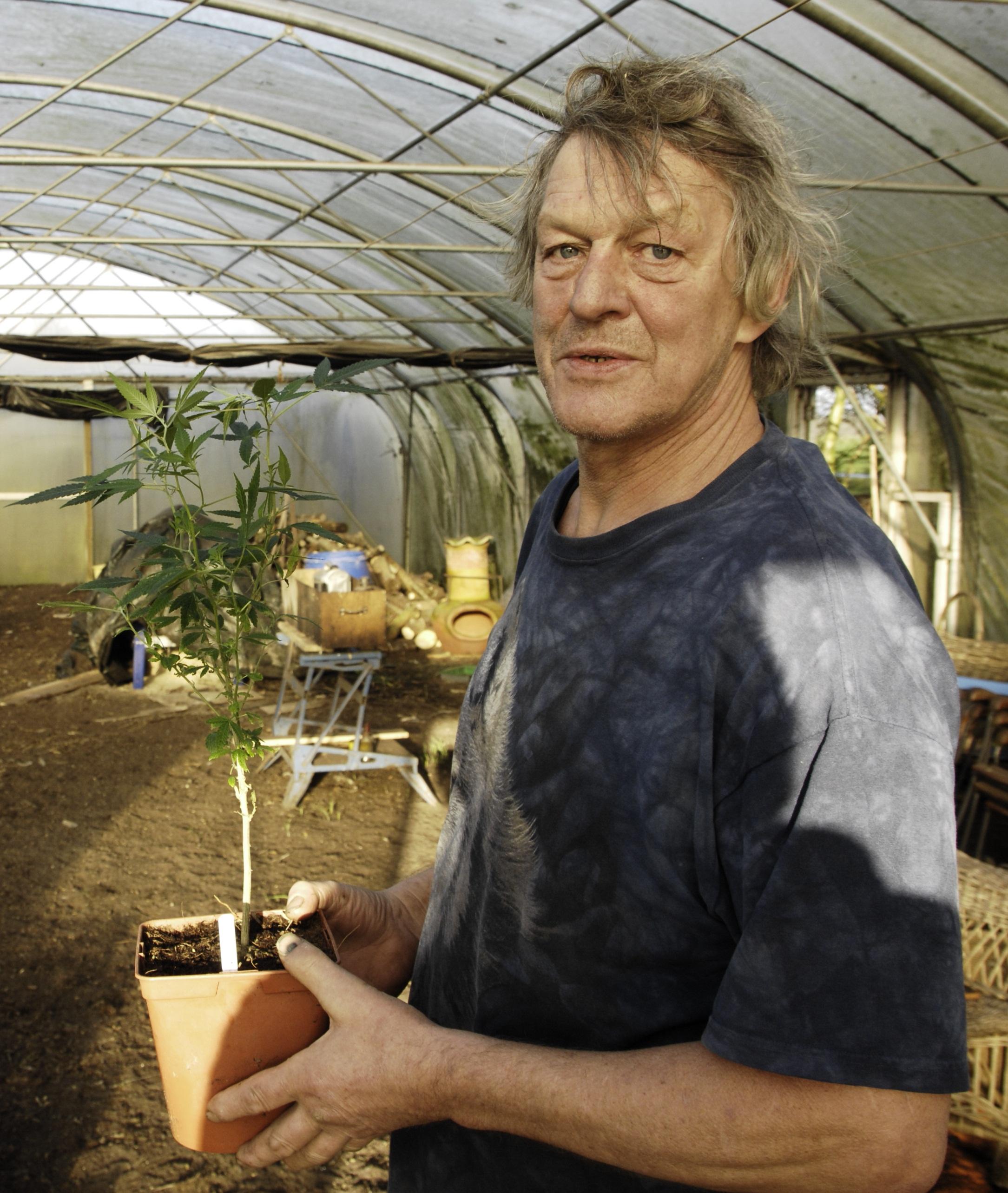 De Friese wietkweker Doede de Jong teelt biologische kaswiet, tenminste als justitie zijn oogst niet confisqueert... [Foto: Gonzo media]