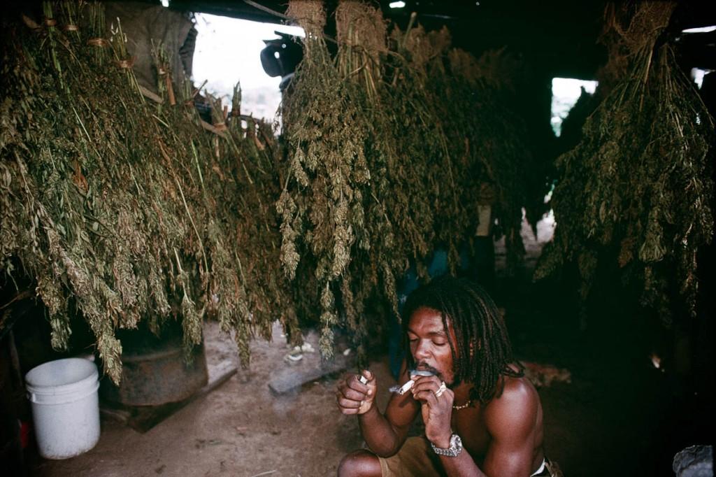 Een typische Jamaicaan rust uit met een welverdiende beloning na een dag hard werken in het veld :-)
