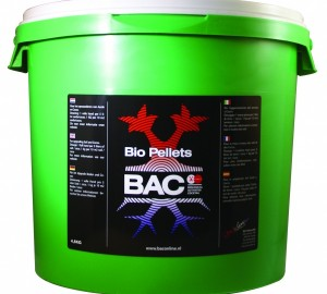 bac-bio-korrels-45kg