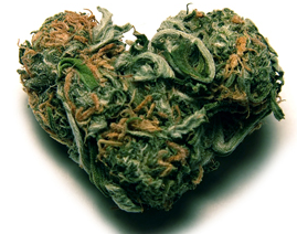 Datingside cannabis