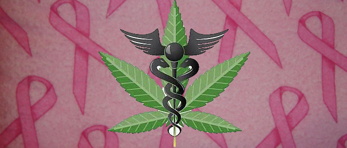 studies-show-marijuana-prevents-breast-cancer-article-thcfinder