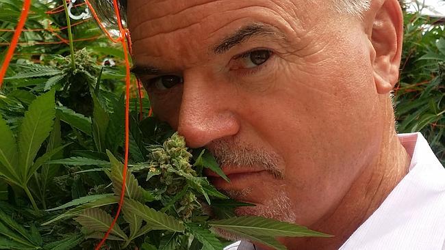 Ross Smith met wietplantjes