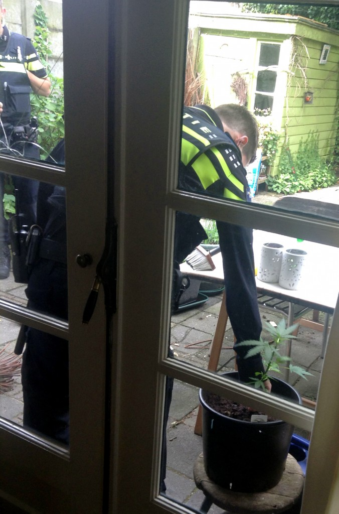 Politie-inval-VOC-01-06-2015_politieman_rukt_plantje_uit_0253