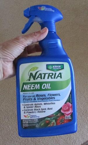 neem-oil-spray
