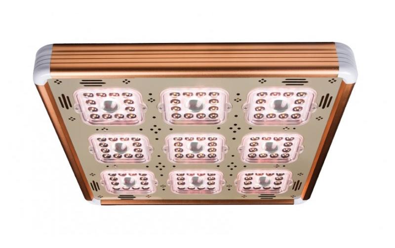 rise-led-kweeklamp-600-800x800