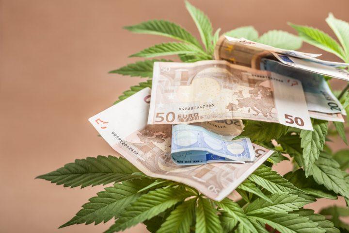 No nonsense kweken betekent ook geld besparen. Foto: Jan Mika, Shutterstock.com