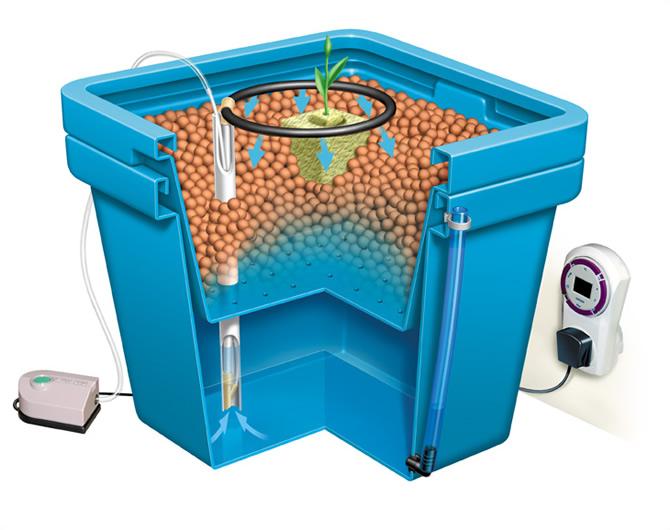 bucket-drip-irrigation-system