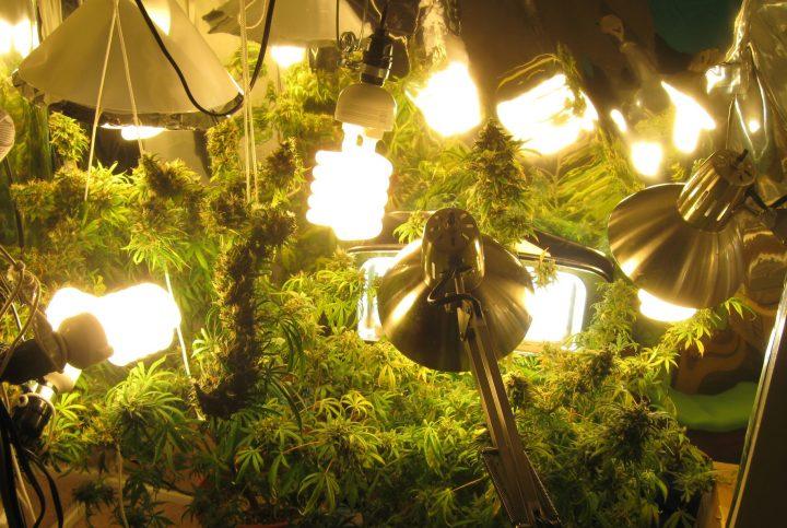Door de zwakke dieptestraling van fluorescente lampen, is het daar slim om ook lager lampen te plaatsen.
