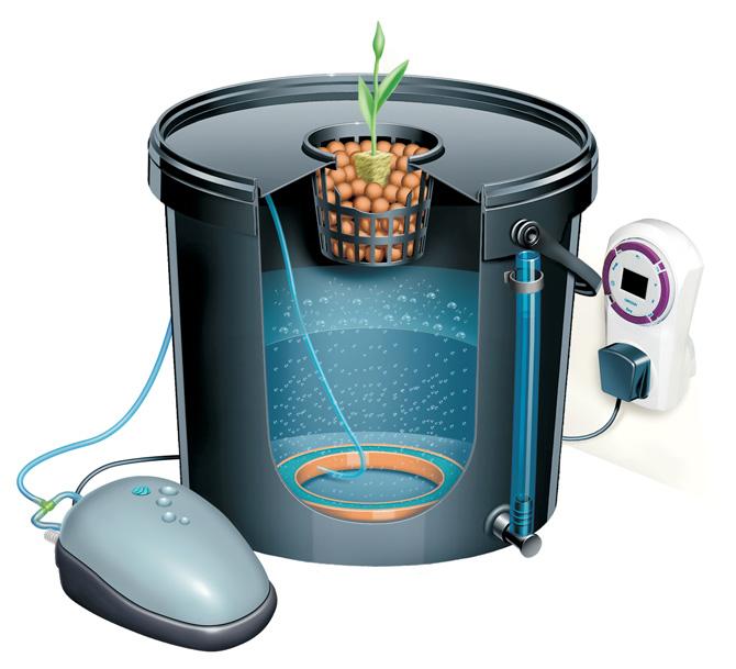 bubbler-dwc-system