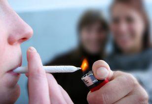Wiet Roken Voor Beginners Cnnbs Nl