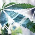 Drank- en tabaksbranche verliest $55 miljard door legale wiet