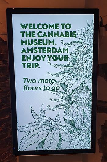het cannabis museum amsterdam telt drie verdiepingen door cnnbs.nl
