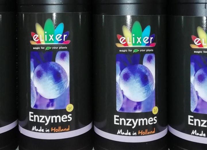Elixer Enzymes