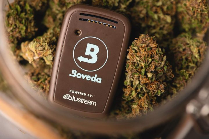 Boveda Butler luchtvochtigheid temperatuur wiet cannabis CNNBS