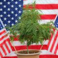 MORE Act • Kiest Congres in VS voor einde wietverbod?