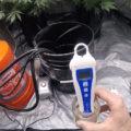 Wiet kweken met een EC-meter, zo doe je dat