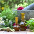 Zes andere planten dan wiet met cannabinoïden!