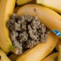 Chiquita Banana, tropische THC traktatie!