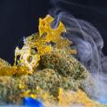 Studie • Meer THC betekent niet automatisch meer high!