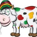 Studie • Word je high van melk of vlees van koeien die hennep eten?