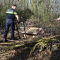 In Nederweert groeit wiet ondergronds in het bos