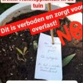 Wijkagenten Lopik pesten thuistelers met briefje tussen wietplanten