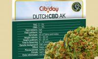 Dutch CBD AK